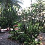 Einmaliger Garten mitten in Bangkok zum entspannen