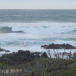 Asilomar State Beach, Pacific Grove, CA (November 2016)