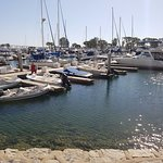 The view from Sallys - beautiful Marina front location
