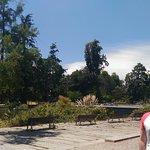 Parque Quinta Normal Foto