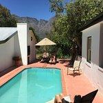 Wild Olive swimming pool