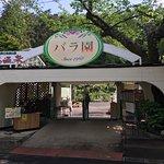 Foto de Hanamaki Onsen Hotel Hanamaki