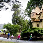 Birr Castle Tree House