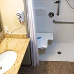 Wheelchair accessible bathroom and shower