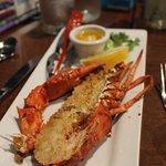 Half lobster side
