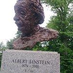 Einstein's bust