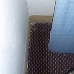 dirty carpet room 101 Ramada