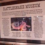 Rattlesnake Museum Rating