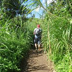 Hiking the longer trail