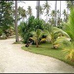 Foto Kura Kura Resort
