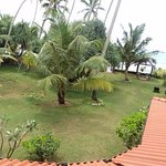 Photo de Kings Palm Villa
