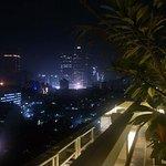 Фотография 2278468