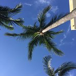 Upward view from a poolside cabana
