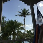 view from my hammock on the balcony - awesome