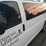Jackson Hole Wildlife Safaris - Day Tours Foto