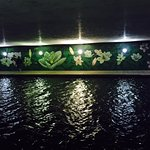 Beautiful murals under the foot bridges are lit up at night. Pretty reflections on the water.