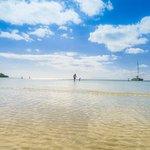 Photo de Sapodilla Bay