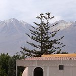 Photo of Casa Andina Classic Arequipa
