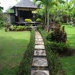 Le jardin tropical et ses transats pour se relaxer