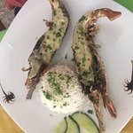 Photo of Langouste Grillee Restaurant