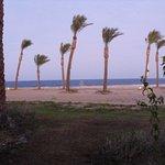 Photo de Siva Port Ghalib
