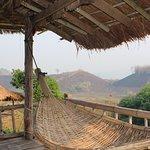 Bamboo Nest de Chiang Rai Photo