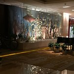 Holiday Inn Nanjing Aqua City Foto