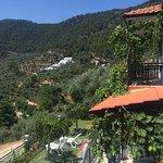 Island View Villa Photo