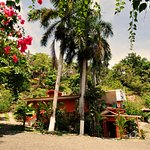 Foto di Condotel Las Cascadas