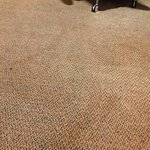 Carpet was a little tired and dated
