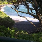Views of the black sand beach and the ocean from the top of the park. Access to the beach was cl
