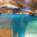 Aquaboulevard Photo