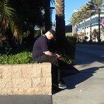 FB_IMG_1479140453260_large.jpg