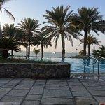 Obraz JA Palm Tree Court