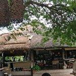 Mubanga Lodge