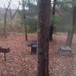 Bear Run Inn Cabins & Cottages resmi