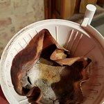 Verschimmelter Kaffeesatz in der Kaffeemaschine