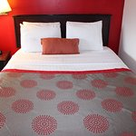 Bedding for Rooms