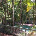 Kondalilla Eco Resort Foto
