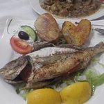 Oliv greek restaurant