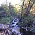 Creek that runs through the campground