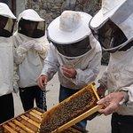 """Atelier Consom'acteur """"apiculture"""""""