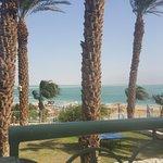 Leonardo Plaza Hotel Dead Sea Foto