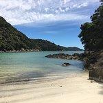 Foto de Wilsons Abel Tasman