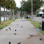 4 minutes stroll from your hotel room to the Sanford Riverwalk