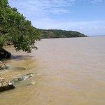 Bilharzia free swimming from this landing