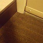 Red Roof Inn Detroit Warren Foto