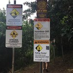All the signs at the top of the trail