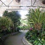 i/s greenhouse