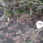 Fairy home - outside the cottage